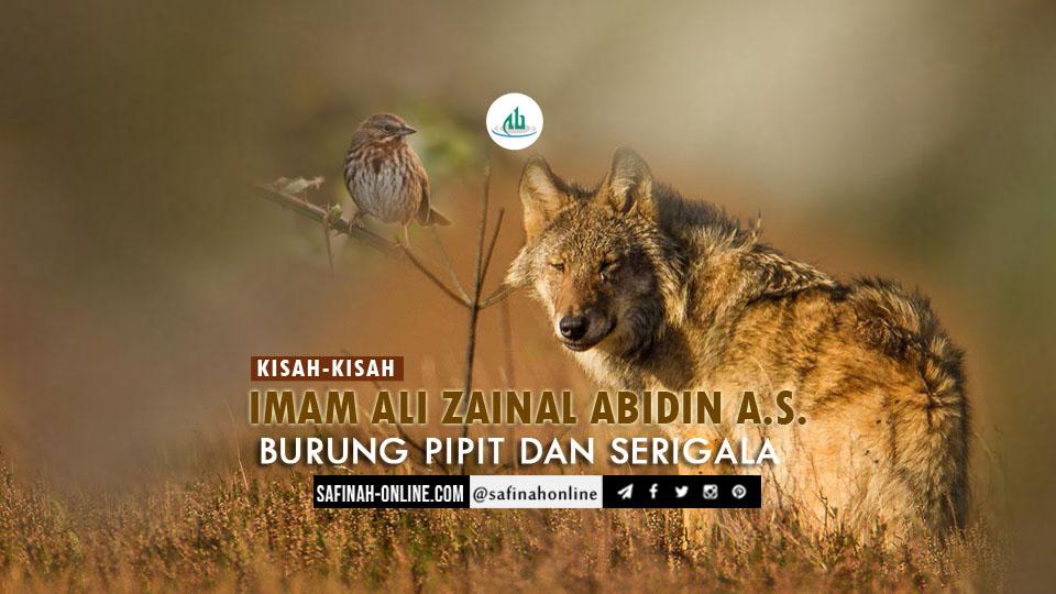 Kisah-kisah Imam Ali Zainal Abidin a.s.: Burung Pipit dan Serigala