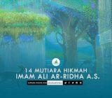 14  Mutiara Hikmah Imam Ali Ar-Ridha a.s.